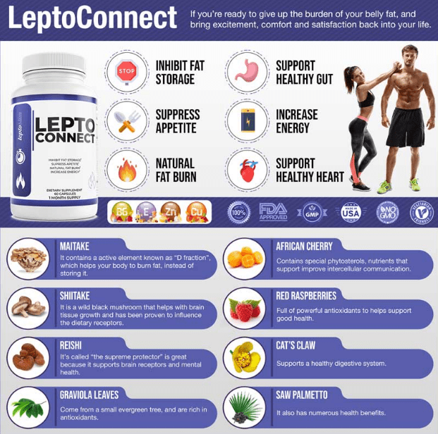 leptoconnect review leptoconnect ingredients