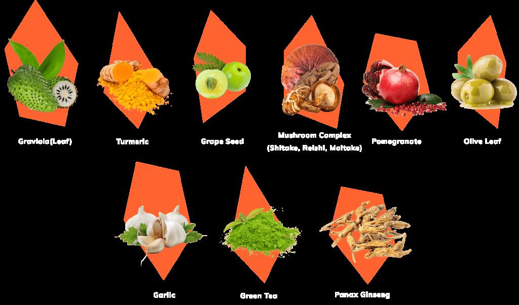 restolin ingredients review